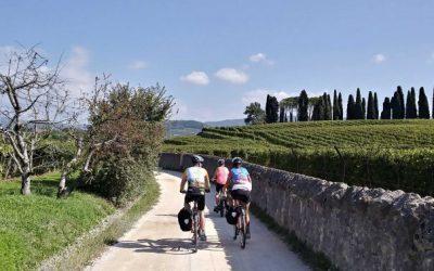 Pedalando tra i vigneti del Veneto: l'Amarone eBike Tour
